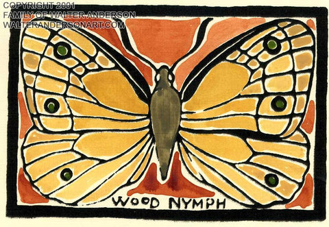 Butterfly; Wood Nymph