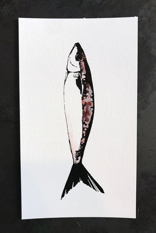 Sardine Watercolor Print