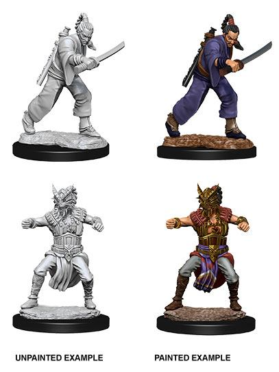 Nolzur's Marvelous Miniatures: Human Monk