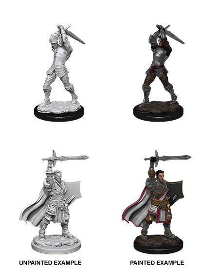 Nolzur's Marvelous Miniatures: Human Paladin | Comic Shop Crawley