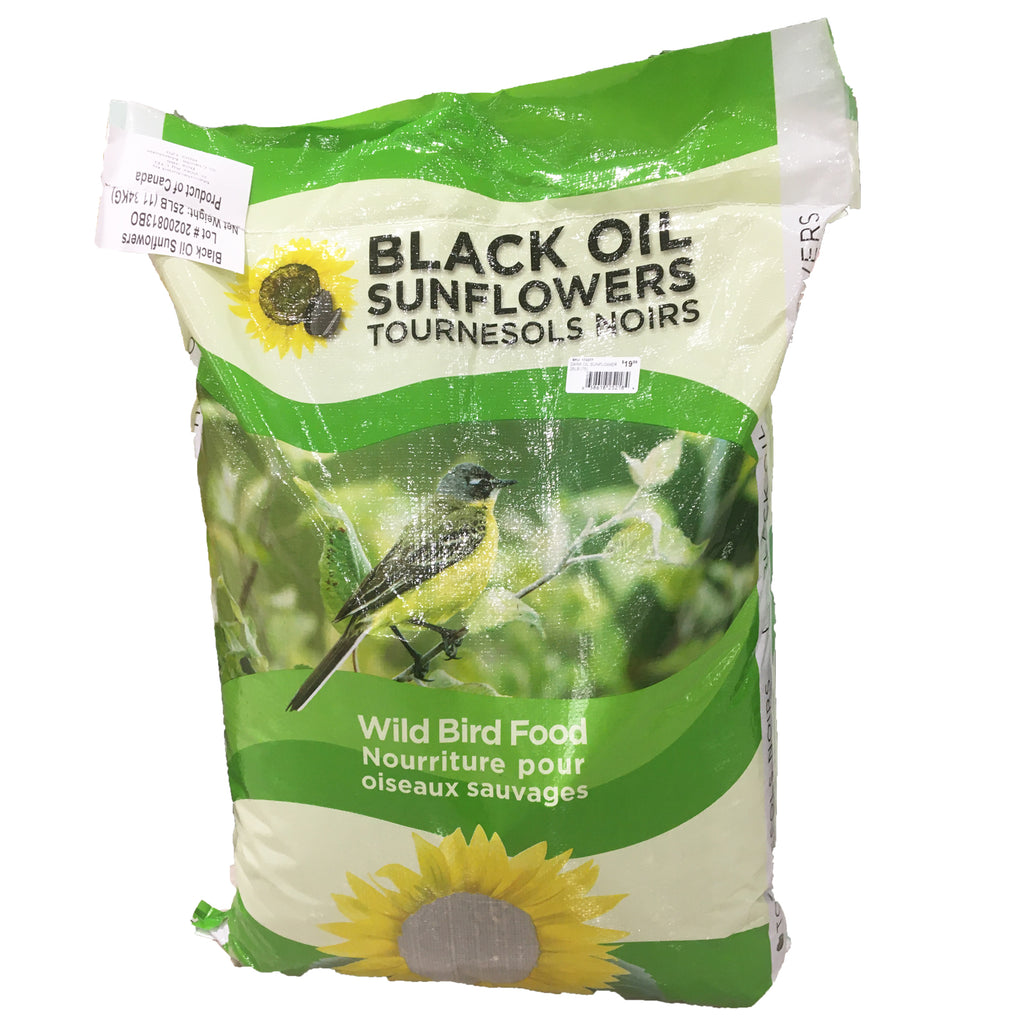 25lb bag of black oil sunflower seed wild bird food
