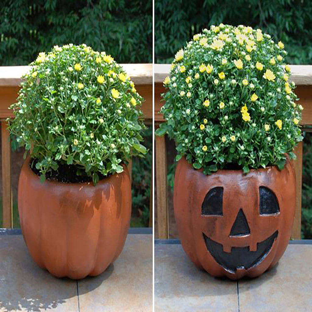ceramic planter with decorated jack o'lantern face planted with yellow fall mums