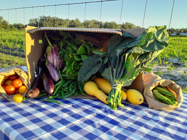 Organic Produce Box FULL Subscription $35 A WEEK through May 2021