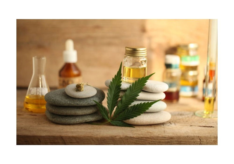 Health and Wellness | CBD Products | CBD Softgels | CBD Sports Cream | CBD Face Serum | CBD Oil Tincture