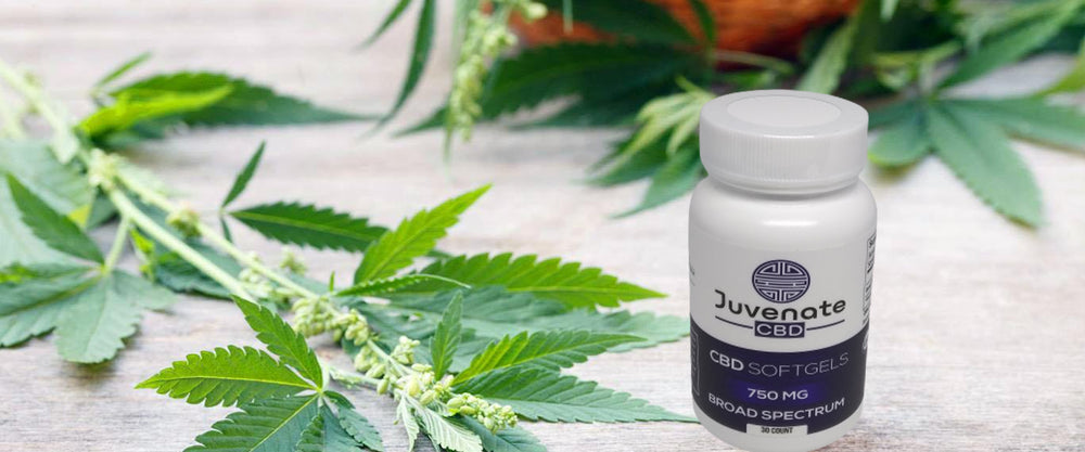 CBD Softgels Broad Spectrum. Based in Houston, Texas we offer affordable health & wellness products.