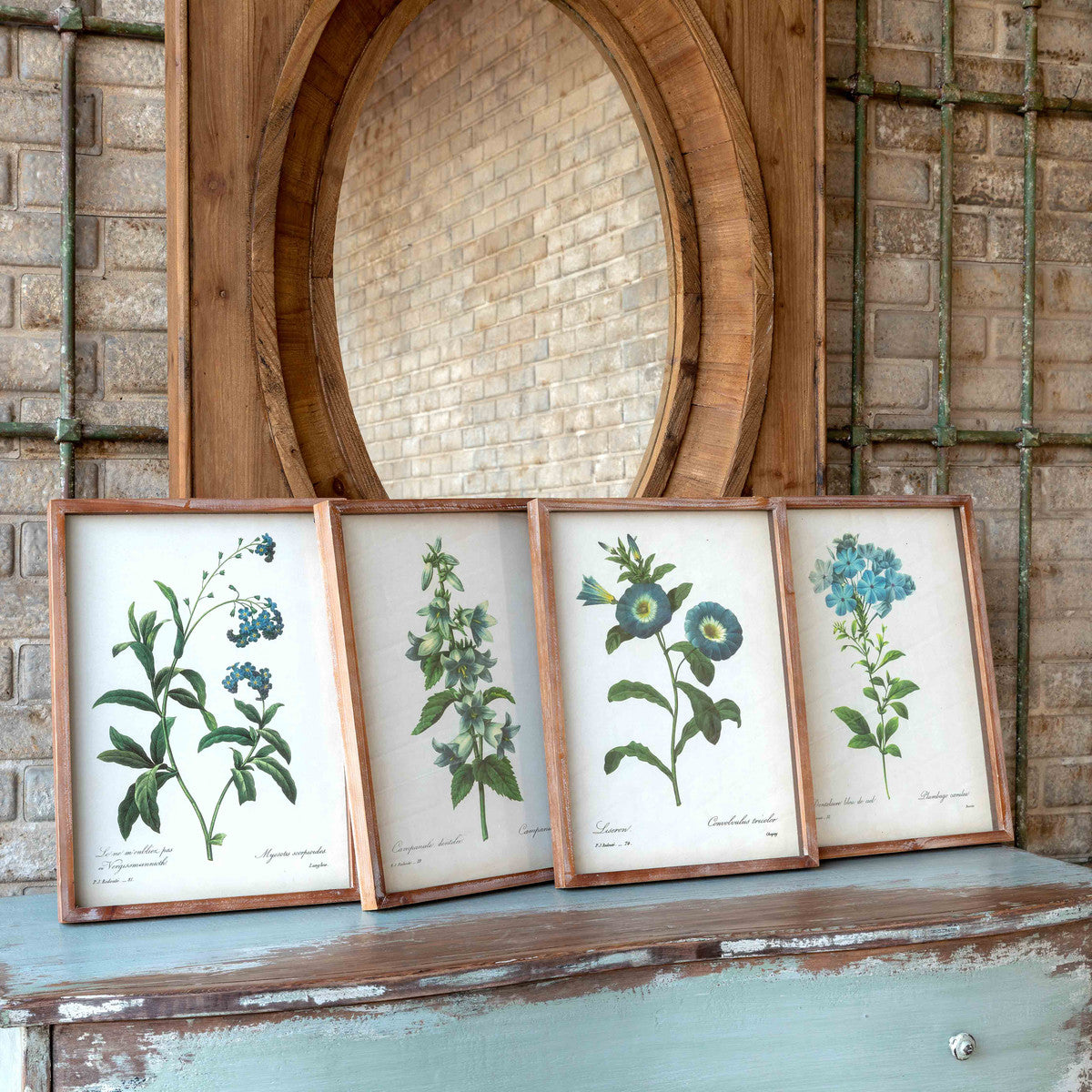 (W) Blue Botanical Framed Prints (Set of 4)