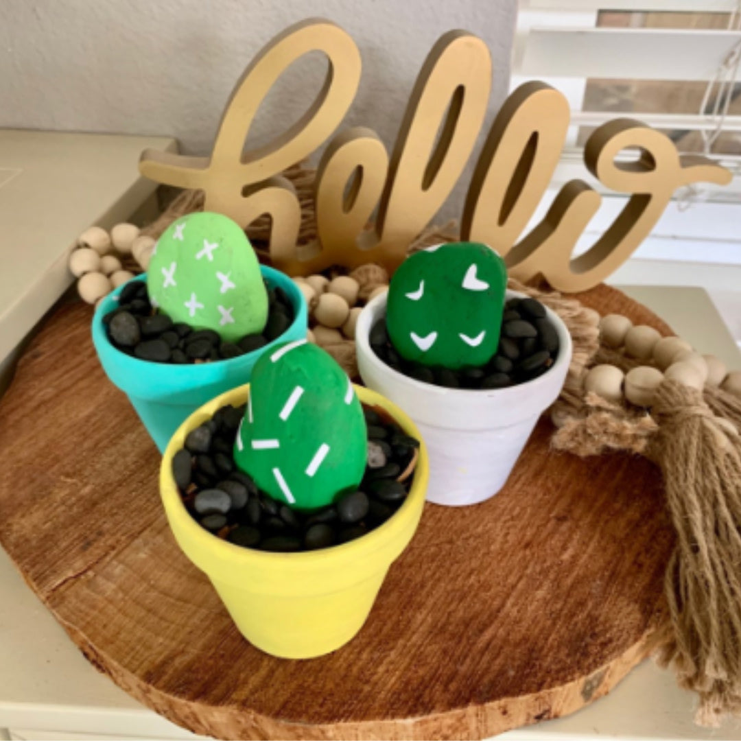 Rocking Painting Kit | Three Mini Pot Rock Cactus Garden