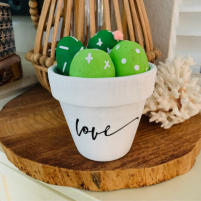 Rock painting kit. This is a DIY kit of a white pot with green cactus rocks inside.  There is great details with love  and cactus marking sticker to add on once drt.