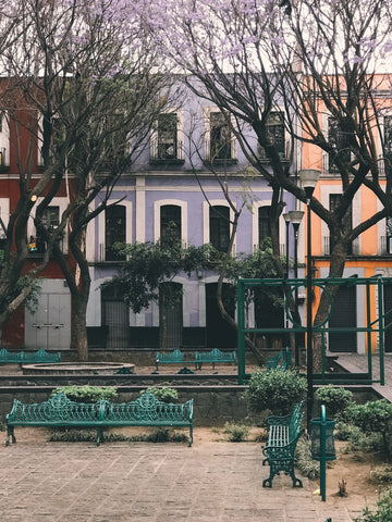 buildings with park bench and grasses