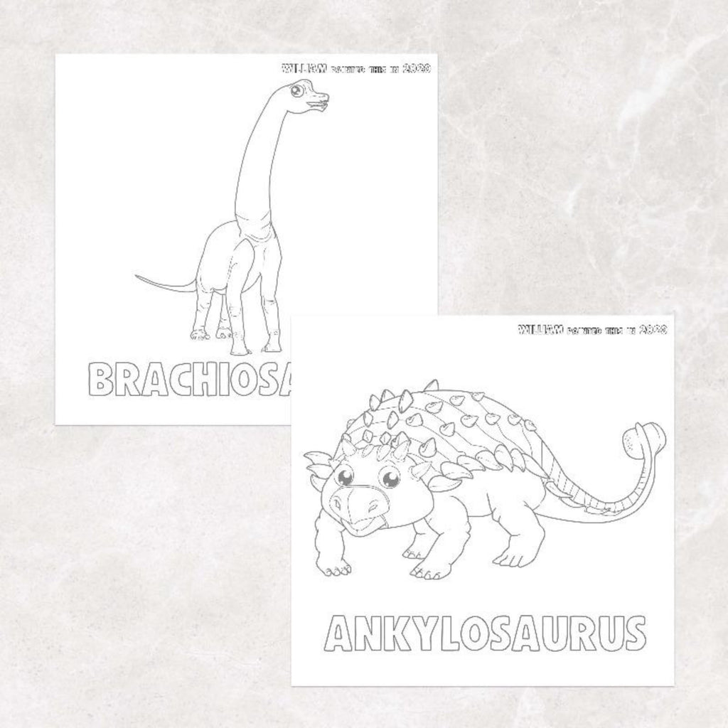Dinosaur Painting Kit - Personalised Childrens Books