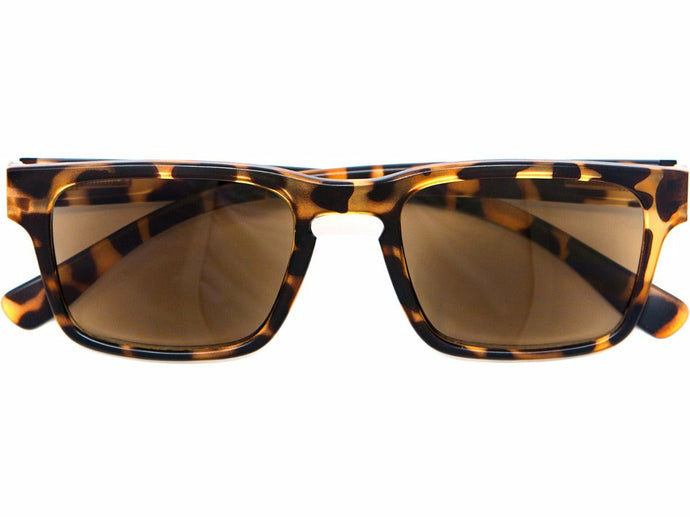 Brisbane Tortoise Sun Reading Glasses