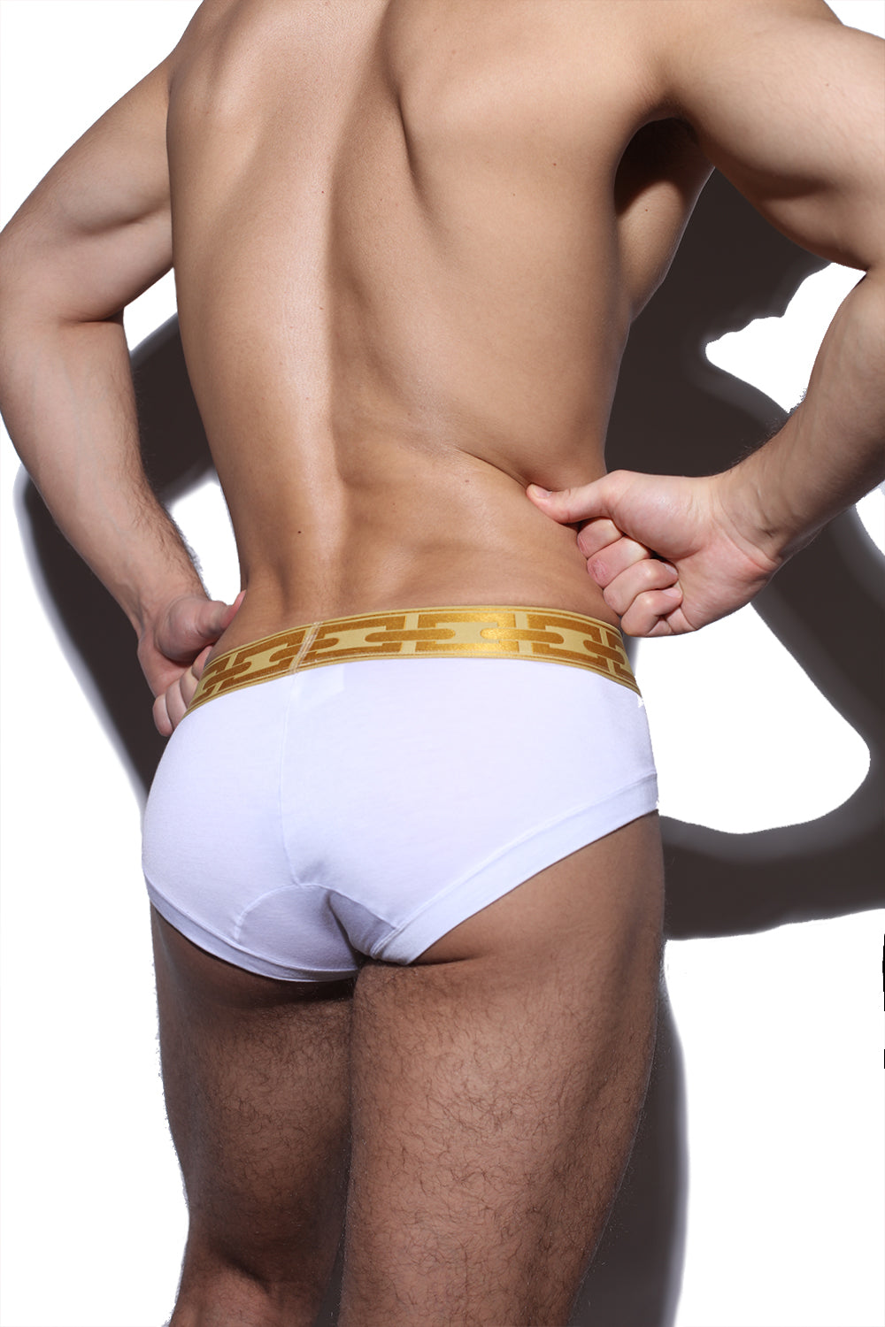 Hercules Brief (Vanna White)