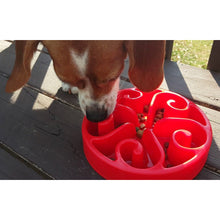 Load image into Gallery viewer, Dog Eating with Siensync Slow Feeder Dog Bowl