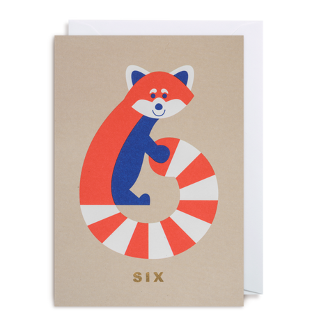 Age 6 Raccoon - Kids Birthday Card