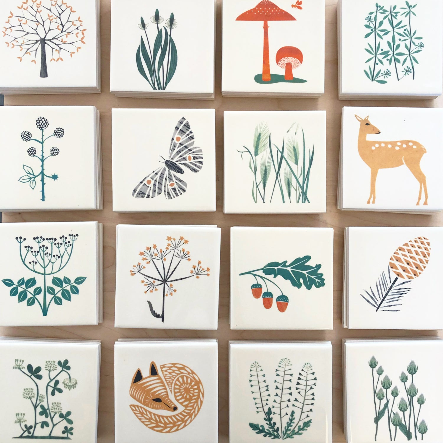 Tile Coasters: Woodland Plants and Animals