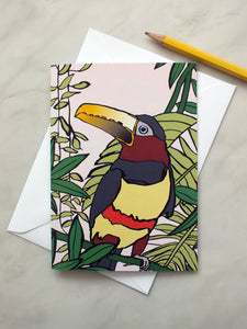 Aracari Bird Card