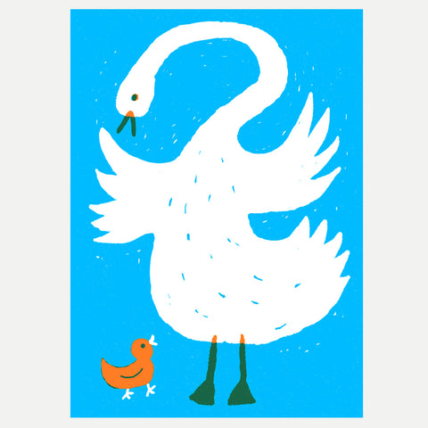 Swan and Cygnet - A3 Print