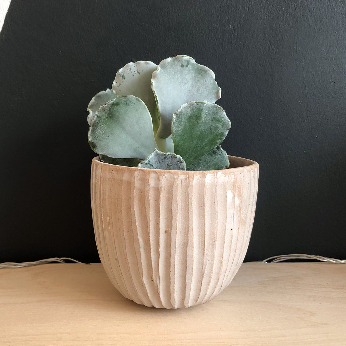 Carved Earthenware Plant Pot - Medium 2