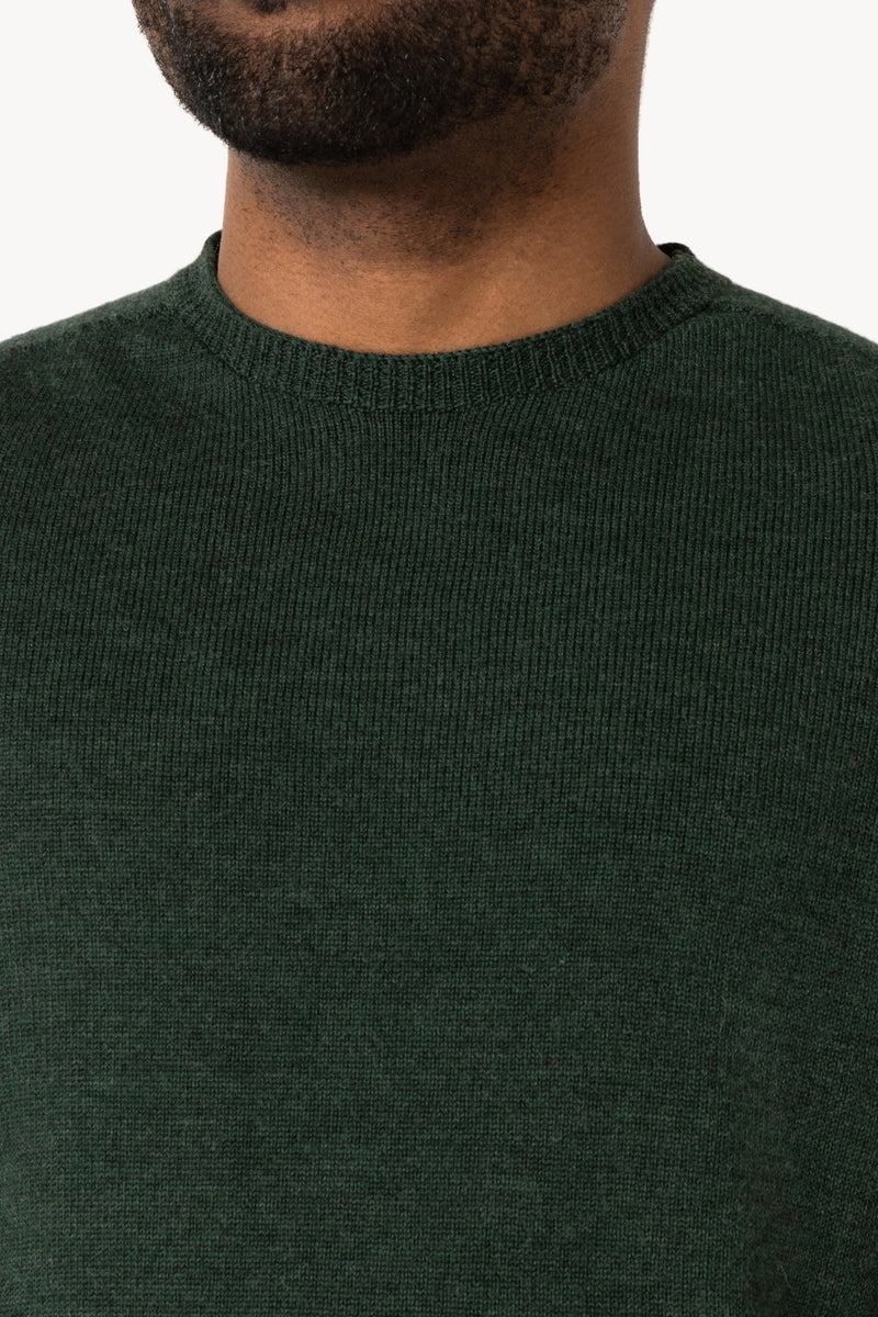 Classic crew neck merino knitted sweater | Forrest Green