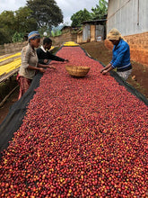 Load image into Gallery viewer, Ethiopian Guji Kercha Grade 1