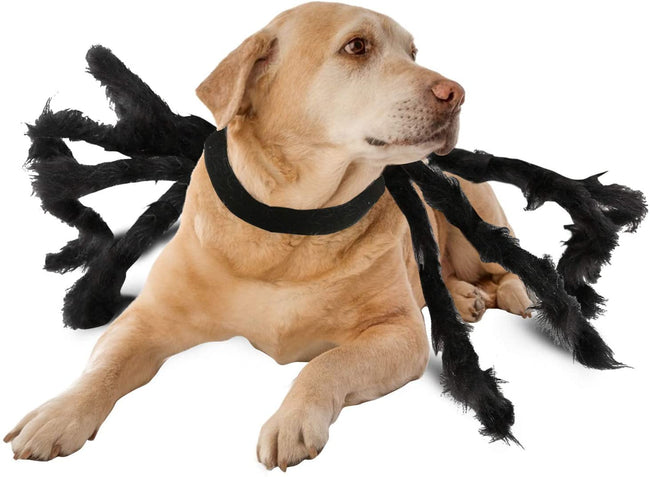 Camlinbo Halloween Costume for Pets Dogs Spiders Sweatshirt Cosplay Apparel Clothes Pets Dogs Halloween Funny Dog Puppy Theme Party Costume for Medium Large Dog Costume - TD Lil Smiles