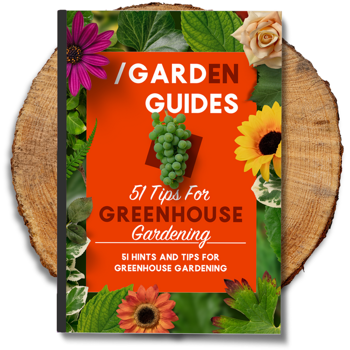 51 Tips For Greenhouse Gardening
