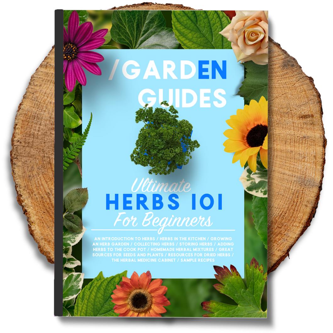 Ultimate Herbs 101 For Beginners
