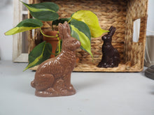 Load image into Gallery viewer, Easter Chocolates and Bunnies