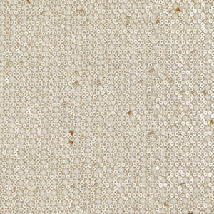 Dyeable White Georgette Fabric With Sequin
