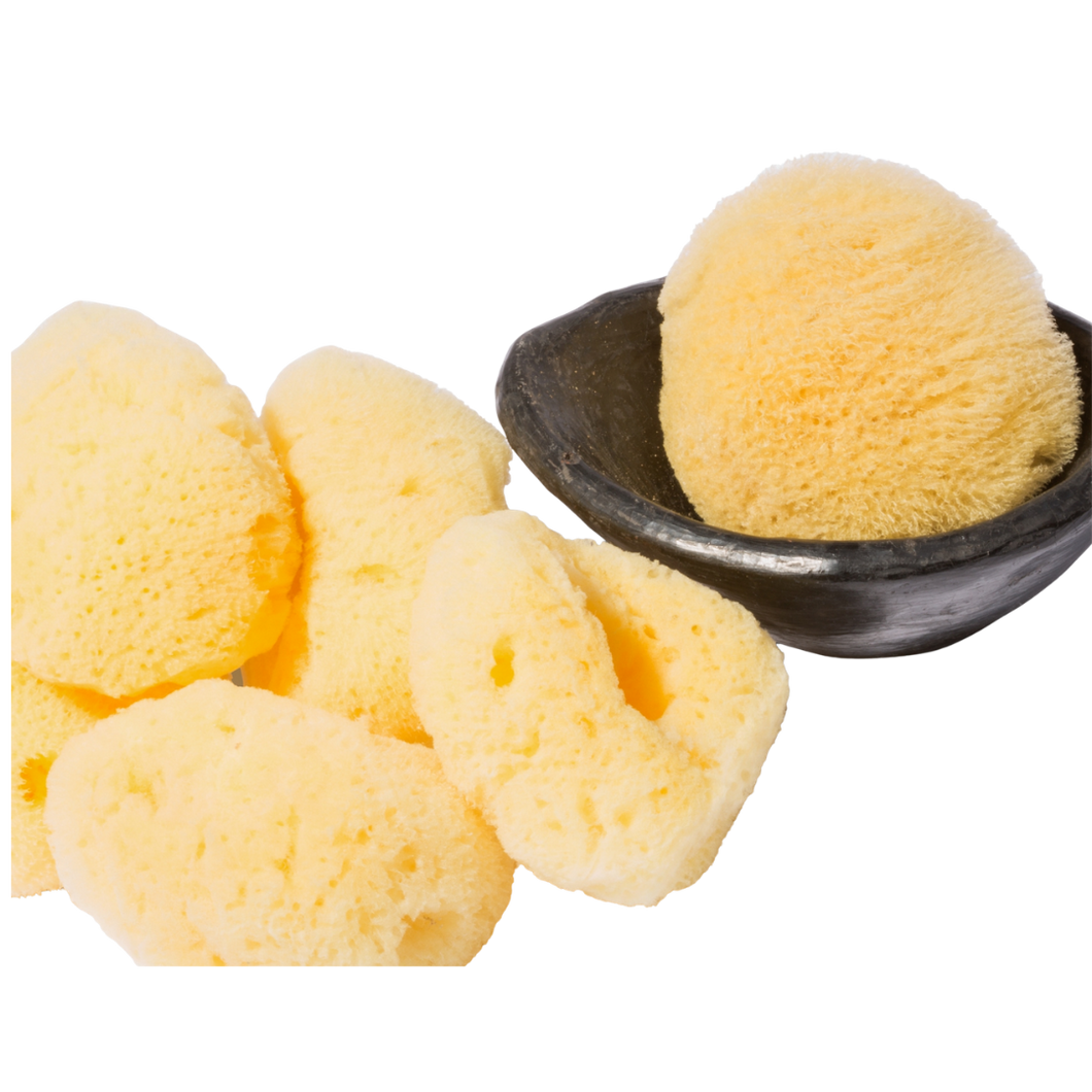 Silky Soft Natural Sea Sponge for Cleansing & Exfoliating