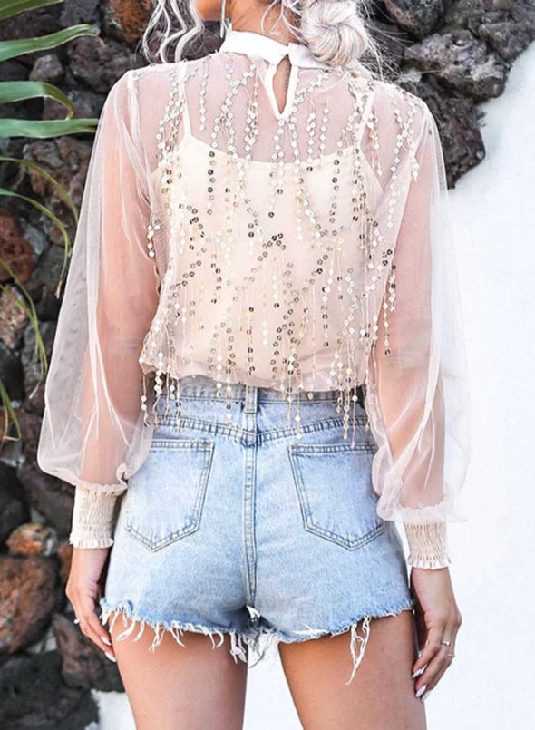 Pink Women's Pullovers Casual Sheer Sequin Solid Round Neck Long Sleeve Date Elegant Sexy Pullovers LC2516156-10