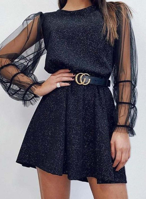 Black Women's Mini Dresses Solid Long Sleeve Round Neck A-line Daily Prom Date Mesh Sheer Decoration Mini Dress LC224604-2