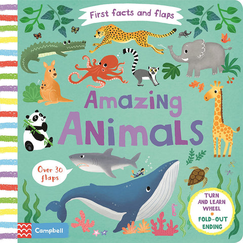 Amazing Animals - First Facts and Flaps (Board book)