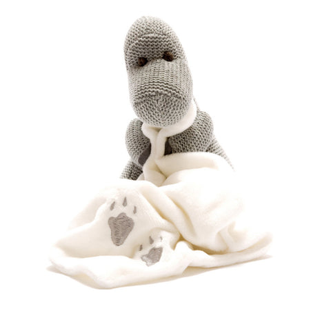 Knitted Grey Diplodocus Dinosaur With Blanket