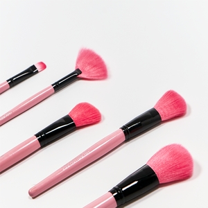 Pink Glory Brush Set (24 Piece)