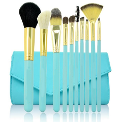 10 Pcs Arctic Brush Set