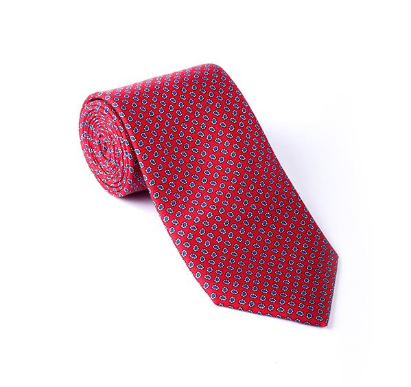 Red & Blue Paisley Printed Tie