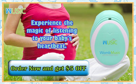 Coupon - 5 dollars off Womb Music Baby Heartbeat Monitor