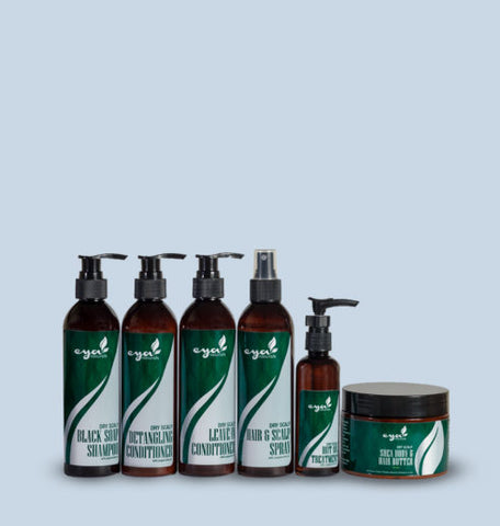 dry scalp regular set
