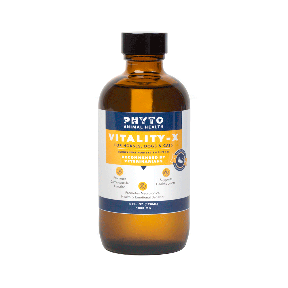 Vitality-X 1000mg 4oz - Phyto Animal Health