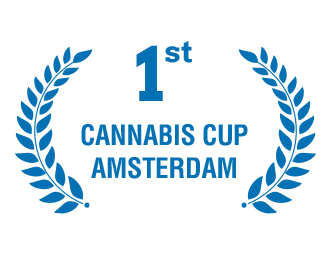 1st Place - Cannabis Cup Amsterdam