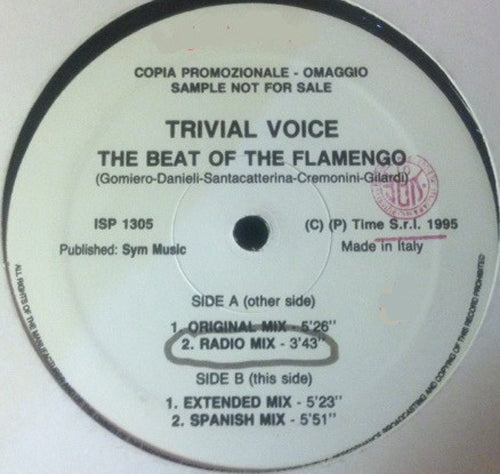 Trivial Voice ‎– The Beat Of The Flamenco
