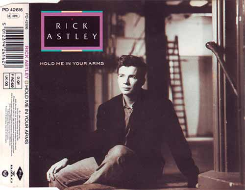 Rick Astley ‎– Hold Me In Your Arms (CD Maxi Single) usado (VG+) box 7