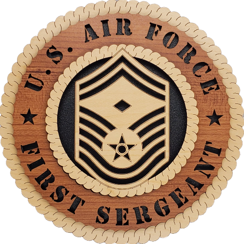 U.S. AIR FORCE 1ST SERGEANT