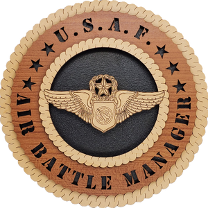 U.S. AIR FORCE AIR BATTLE MANAGER L9