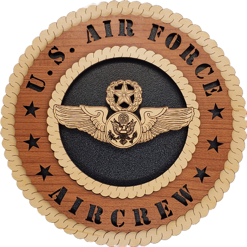 U.S. AIR FORCE AIRCREW L9