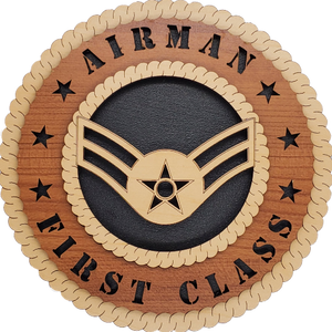 U.S. AIR FORCE AIRMAN FIRST CLASS