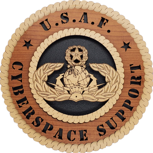 U.S. AIR FORCE CYBERSPACE SUPPORT L9