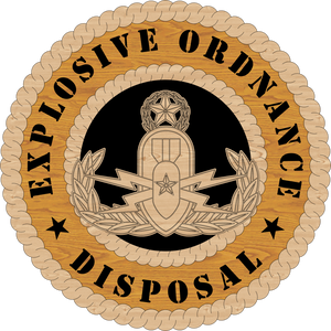 U.S. AIR FORCE EXPLOSIVE ORDNANCE DISPOSAL (EOD) L9