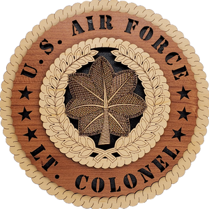U.S. AIR FORCE LT COLONEL